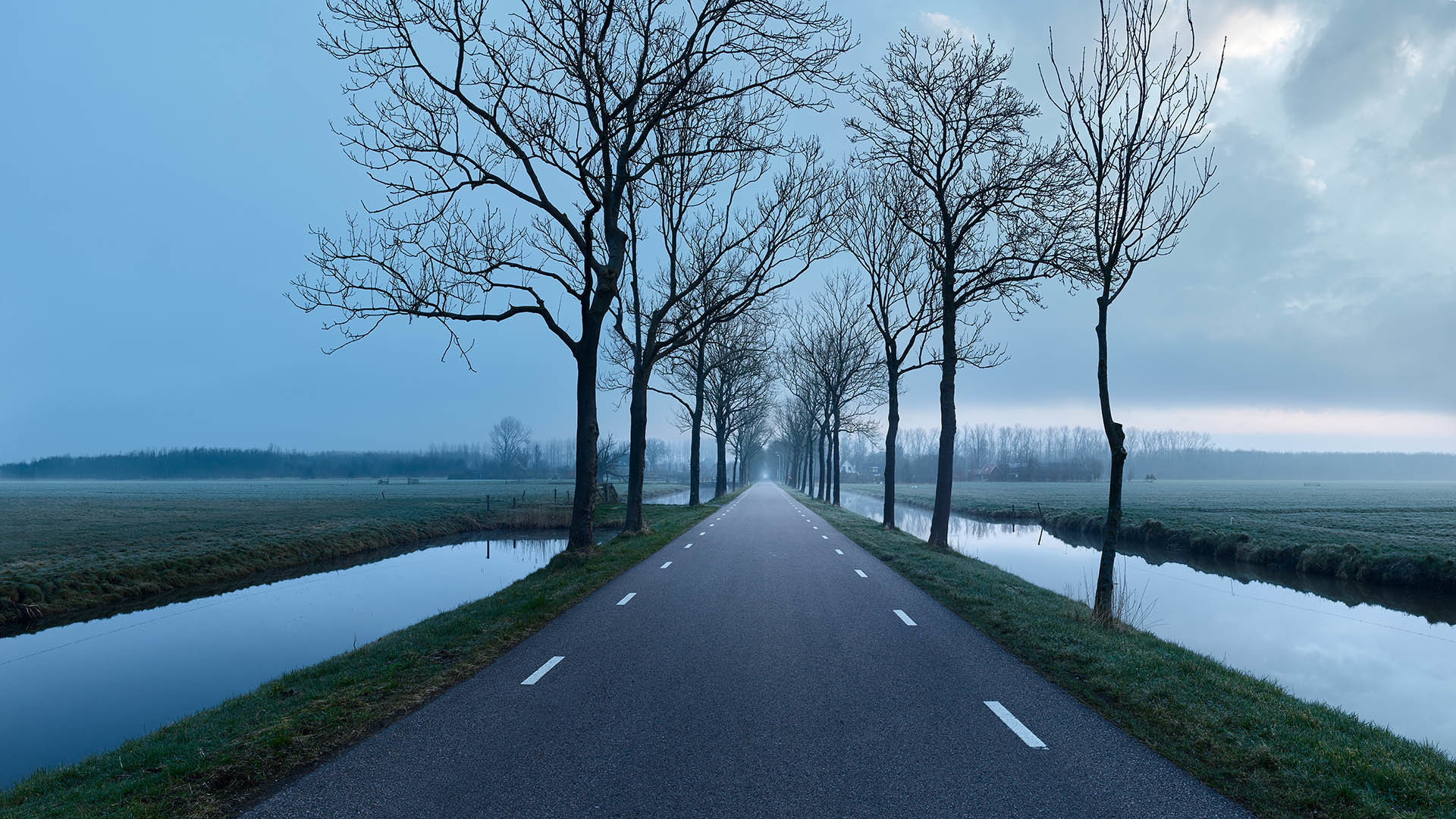 Foggy road in countryside in twilight